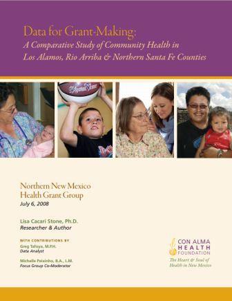 2008 NNMHGG Data for Grantmaking Summary