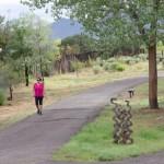 Healthy People, Healthy Places Grantees